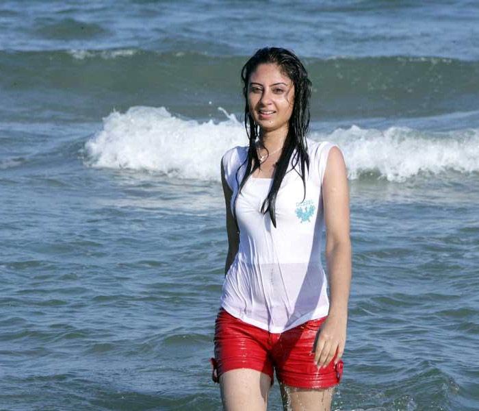 South Indian Actress Hot Profiles Sexy Beach Wet Big Boobs